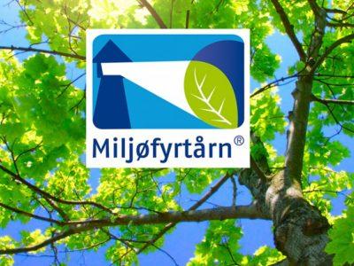 miljofyrtarn-skog
